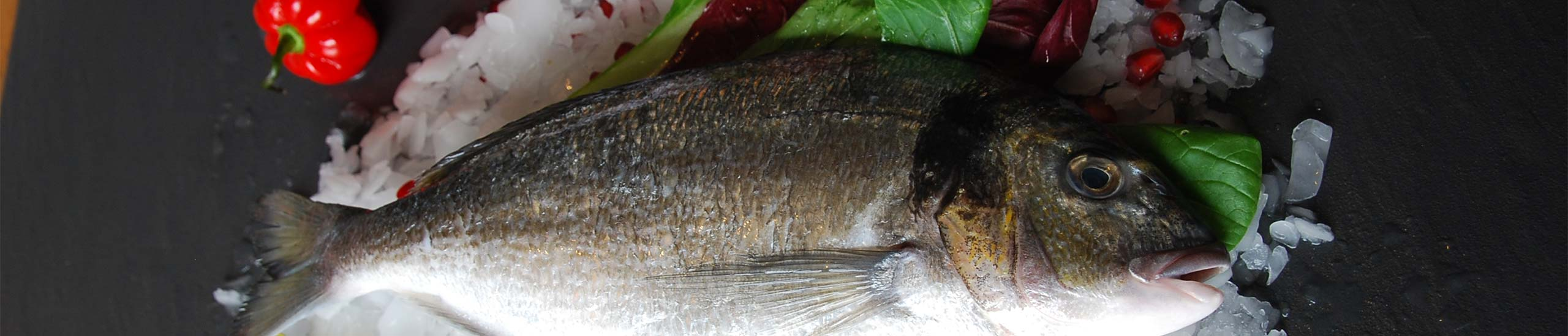 Fisch auf Eis dekoriert mit Granatapfel, Paprika und Zitronen